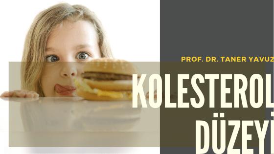 Çocuklarda Kolesterol Düzeyi