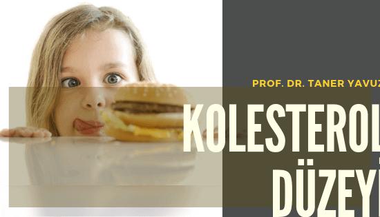 Kolesterol Düzeyi