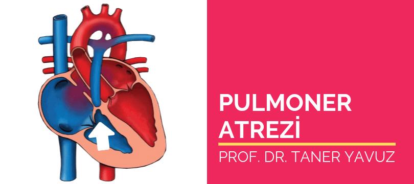 Pulmoner atrezi