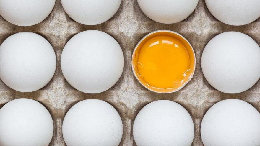 Yumurta Hakkında Bilinmesi Gerekenler