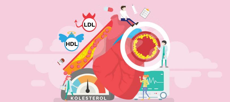 kolesterol seviyesi